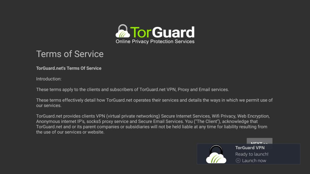 TorGuard VPN on Firestick